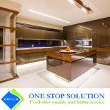 Portello di vetro di alluminio di modo degli armadi da cucina moderni della mobilia (ZY 1085)