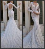 ウェディングドレスB16302に玉を付ける長い袖のBertaの花嫁衣装の人魚のレース
