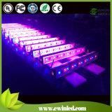 Garantia sem Fio dos Anos da Arruela com 3 da Parede de Luz LED do Mestre DMX512 RGBW (4 em 1)