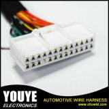 De elektro Kabel assembleert de Uitrusting van de Draad van de Kabel en de Uitrusting van de Bedrading van de Assemblage van de Kabel