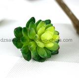 Flor artificial de la planta de los Succulents artificiales naturales decorativos del tacto (SW17669)