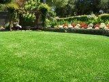 Rendabele en Duurzame PP+Nonwoven die met 40mm het Decoratieve Synthetische Gras van het Landschap steunen