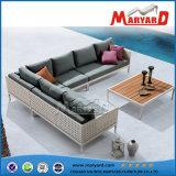 庭の家具の藤のSelectionalソファー