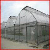 Крышка парника Multi пяди фермы земледелия пластичная для сбывания