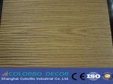 Hauptwand-Wellen-Panel des aufnahme-Studio-3D dekoratives