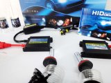 Car ConversationのためのAC 12V 35W H11 Head Lamp