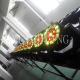 Yeux d'abeille de Roating 19X15W DEL déménageant la lumière principale de lavage de zoom