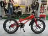 """Kind-Schleife der China-Fertigung-20 """", Baby-Fahrrad"""