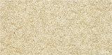 مصنع صوّان حجارة [سرميك تيل] خارجيّة لأنّ جدار ([300إكس600مّ])