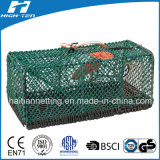 Grüne Farben-Befestigungsklammer-Falle/Fisch-Falle