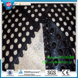 Estera de goma del suelo del orificio/esteras antifatiga de goma del drenaje