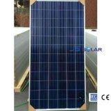 Poli comitato solare di alta qualità 250W con TUV e certificati del Ce per il servizio globale
