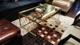 ブラシのステンレス鋼のホーム(CTS-003)のためにセットされるガラスコーヒーテーブル
