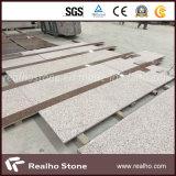 Azulejos rojos del granito G562 del arce de piedra popular de China para el suelo/la pared/al aire libre