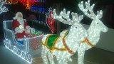 Décoration de jardin d'usager de maison d'éclairage LED de Noël
