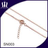 Encadenamiento de la plata esterlina Sn003 925 con el gancho de seguridad