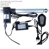 12 볼트 1000n 100mm 20mm/S DC Linear Electric Actuator IP65 (FY011)
