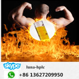 Spier die Steroid Testosteron Undecanoate bouwen van het Poeder