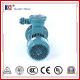 ACモーター耐圧防爆モーター