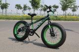 高い発電の雪の脂肪質のタイヤのバイク(ly19)