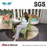 정원 Furniture Rattan 또는 Rattan Furniture Set (ES-OL038)