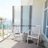 熱い販売の庭アルミニウムフレームの藤のテラスの屋外の家具の円卓会議
