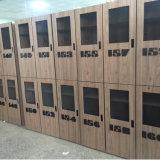 Armario de almacenaje laminado del bloqueo de la moneda de Fumeihua