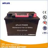Niets Zure Batterijen 57113 DIN71 van het Lood van het Onderhoud voor de Auto van de Luxe
