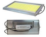 2017 신형 LED 플러드/주유소 빛 옥수수 속 100W 옥외 빛 400W 300W 200W 100W LED 플러드 빛