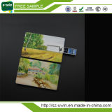2017 Comercio al por mayor USB OEM tarjeta de crédito palillo de memoria Flash (UWIN-169)