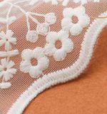 Ткань шнурка вышивки хлопка конструкции весны 2017 сеток новая