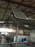 alta lámpara de los 6m de la luz de calle solar con las lámparas del LED