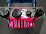 Laser Lipo de la reducción de Celluite del Liposuction del salón