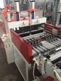 Línea bolso de la marca de fábrica una de Ruipai del control de ordenador del PE que hace la máquina