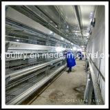 Клетка цыпленка оборудования птицеферм низкой цены подавая с потатором