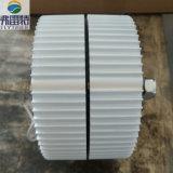 generador de imán permanente de 300W 12V/24V