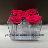 Fornitore acrilico superiore di Shenzhen della casella della Rosa