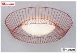 Lampe d'intérieur simple moderne de plafonnier d'éclairage de DEL avec du ce