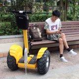 De Elektrische Autoped van het Elektrische voertuig van het Saldo van de Fabriek van China V6+