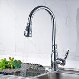 Il bicromato di potassio del rubinetto della cucina interamente intorno gira estrae il miscelatore del dispersore