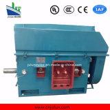 Série de Ykk, motor assíncrono 3-Phase de alta tensão refrigerando Air-Air Ykk5002-2-630kw