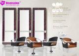 شعبيّة [هيغقوليتي] صالون مرآة [بربر شير] صالون كرسي تثبيت ([ب2043ف])