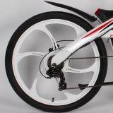 Bici gorda eléctrica del diseño de la cautela de la montaña humana del bombardero