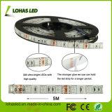 La iluminación DC12V del LED impermeabiliza el kit de la luz de tira del RGB Rgwbw LED