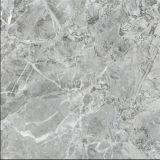 Teja de materiales de construcción Planta, Portugal mármol gris Diseño de porcelana esmaltada de la baldosa, cerámica de porcelana pared Flooring60 * 60