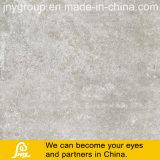 Kleber-Entwurfs-rustikale Porzellan-Fliese für Fußboden und Wand Caria 600X600mm (Caria Ceniza)