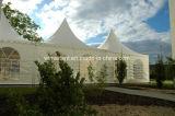 Tente d'écran de mariage de quarte de structure de l'aluminium 20 x 20