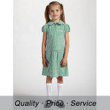 Custom Primary School Uniform Designs for School Dress