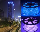 LEDのストリップ屋外適用範囲が広いLEDの洪水ライト防水LED IP65