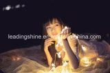 En forme d'étoile de Noël Halloween 220V 12V Entrée Sortie Lumière LED Fée